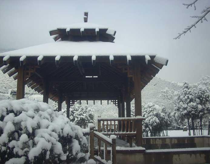凤凰山陵园冬日景观