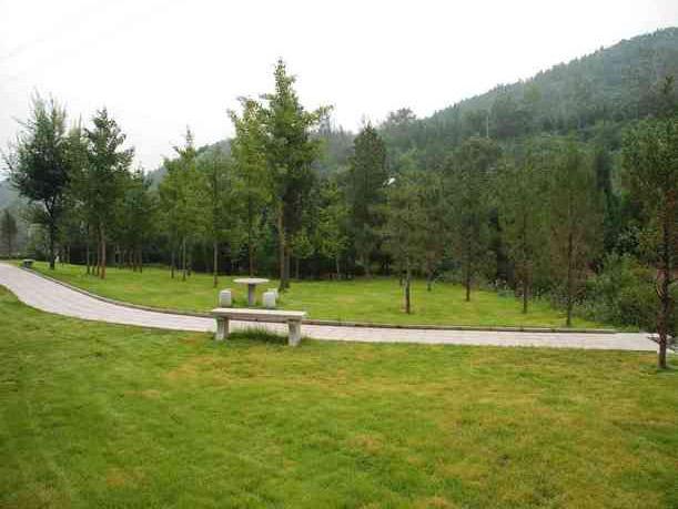 8陵园绿化