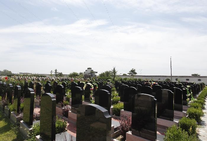 8墓区环境