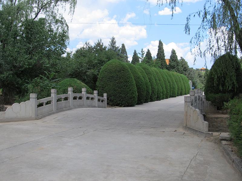 8陵园墓区