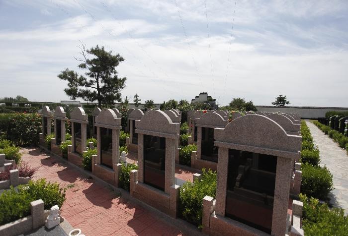 7墓区环境