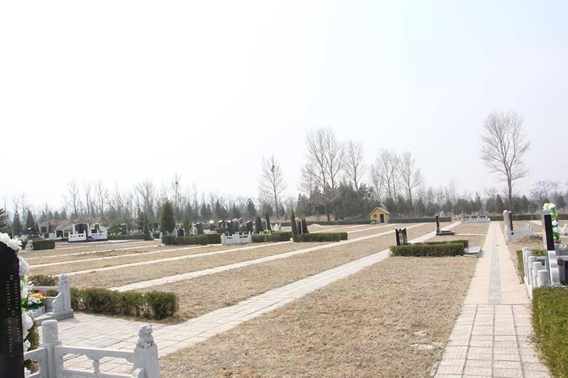 11墓区环境