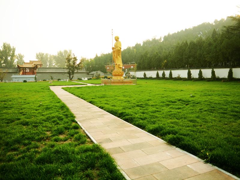 6陵园环境