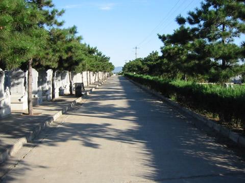 2墓区景观