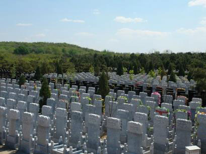 3墓区环境