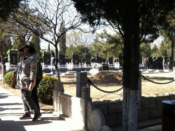 3墓区景观